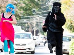 Blue_Gorilla